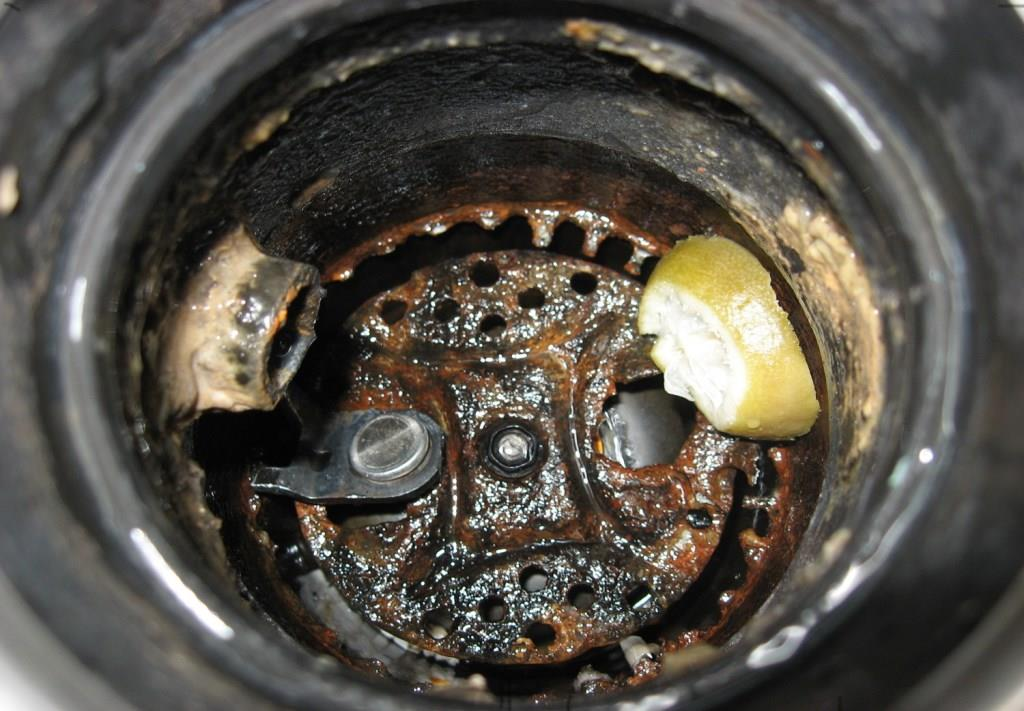 Garbage disposal repair and care for you Sammamish Rental.